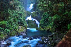 cascade NZ